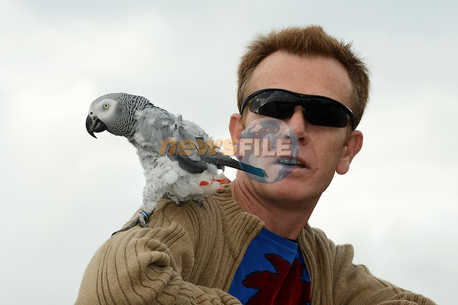 Frank Dennis from the Marsh Road and Joey his African Grey parrot at the Boyne Fishermen's Rescue and Recovery Service Open Day.