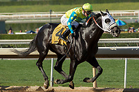 ARCADIA, CA  FEBRUARY 3 : #4 Lombo, ridden by Flavien Prat, in the stretch of the Robert B. Lewis Stakes (Grade lll) on February 3, 2018 at Santa Anita Park in Arcadia, CA.(Photo by Casey Phillips/ Eclipse Sortswire/ Getty Images)