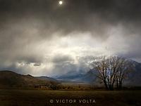 Eastern Sierra/Yosemite