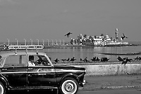 A Mumbai Taxi at the Mumbai Bay area with the Mosque behind. Notice the ever so present Crows thescavengers of Mumbai