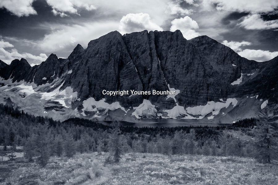 The Rockwall and Floe Lake caught in all their majesty from a meadow on the trail leading to Numa Pass, black and white