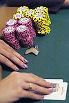 Shark tooth for a card protector.