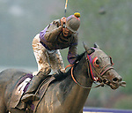 Breeders' Cup 2007