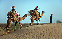 Travelers ride CAMELS through SAND DUNES in the THAR DESERT near JAISALMER - RAJASTHAN, INDIA - MR