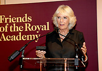 Camilla at Royal Academy of Arts to Launch RA250 Friends Membership Scheme