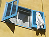 blue wooden slatted window shutter with clothes drying in the sun<br /> <br /> persianas azules con ropa secando en el sol<br /> <br /> blauer Holzfensterladen mit W&auml;sche, die in der Sonne trocknet<br /> <br /> 2272 x 1704 px<br /> 150 dpi: 38,47 x 28,85 cm<br /> 300 dpi: 19,24 x 14,43 cm