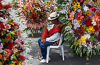 """MEDELLIN, COL AUG 07. A flower grower known as """"silleteros""""  near floral arrangements  of an  flower 59th in Medellin,  Colombia, on August 7, 2016. (Photo by Fredy Builes / VIEWpress)"""