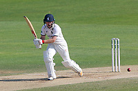 Ian Westwood in batting action for Warwickshire during Essex CCC vs Warwickshire CCC, Specsavers County Championship Division 1 Cricket at The Cloudfm County Ground on 20th June 2017