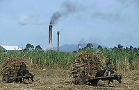 jbo70196 asia Philippines Negros agriculture biomass energy landless labourer people work on sugarcane sugar cane plantation hazienda carabao transport with bullock cart water buffalo sugar factory with exhaust pipe pollution .Asien Philippinen Negros Landwirtschaft landlose Landarbeiter bei Zuckerrohrernte Zucker Zuckerrohr Transport mit Wasserbüffel Karren Zuckerfabrik mit rauchenden Schloten Abgase Luftverschmutzung Biomasse Bagasse Energie .copyright Joerg Boethling/agenda ph. ++49 40 39190714