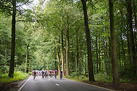 peloton racing through the Zoni&euml;n Forest<br /> <br /> Brussels Cycling Classic 2016