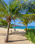 Virgin Gorda, British Virgin Islands, Caribbean <br /> Morning on palms and the beach at Spring Bay, Spring Bay National Park