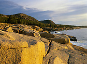 The rocky shoreline of Acadia National Park in Maine USA.