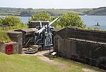 Historic military artillery gun, Pendennis Castle, Falmouth, Cornwall, England, UK