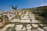 Picture of St Philip Gate road.  Hierapolis archaeological site near Pamukkale in Turkey.