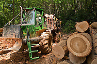 John Deere Forwarder with cut logs