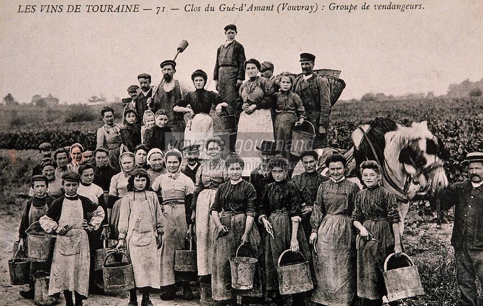 Europe/France/Centre/37/Indre-et-Loire/Vouvray: Ecomusée - Vieille carte postale - Troupe de vendangeurs vers 1920