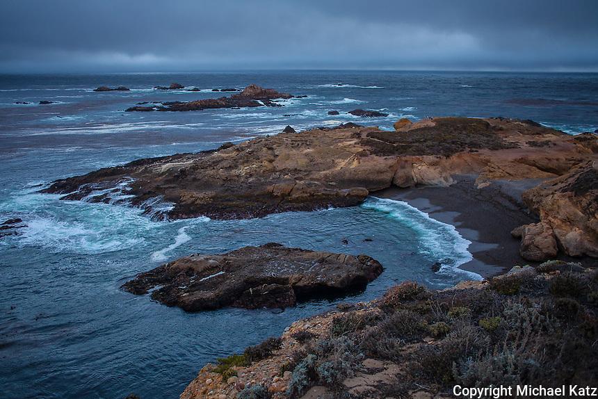 Seashore, Point Lobos