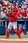 26 February 2019: St. Louis Cardinals catcher Francisco Pena in action during a Spring Training game against the Washington Nationals at the Ballpark of the Palm Beaches in West Palm Beach, Florida. The Cardinals defeated the Nationals 6-1 in Grapefruit League play. Mandatory Credit: Ed Wolfstein Photo *** RAW (NEF) Image File Available ***