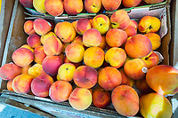 Georgia peaches are seen in a supermarket in New York on Tuesday, June 27, 2017.  Because of bad weather estimates of 80 percent of this summers' crop of juicy peaches from the Peachtree State of Georgia have been destroyed. The peaches in many orchards are sub-standard and are not worth picking meaning multi-million dollar losses to the farmers and the state's economy. (© Richard B. Levine)
