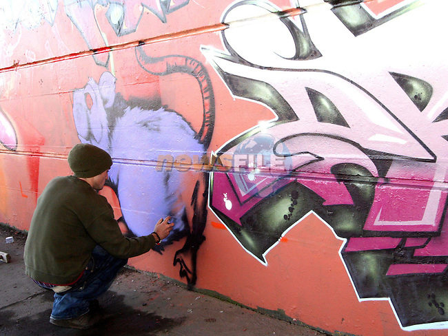 Graffiti artist Barry Finnegan finishes the murals under the Bridge of Peace in Drogheda...Photo NEWSFILE/Jenny Matthews.(Photo credit should read Jenny Matthews/NEWSFILE)....This Picture has been sent you under the condtions enclosed by:.Newsfile Ltd..The Studio,.Millmount Abbey,.Drogheda,.Co Meath..Ireland..Tel: +353(0)41-9871240.Fax: +353(0)41-9871260.GSM: +353(0)86-2500958.email: pictures@newsfile.ie.www.newsfile.ie.FTP: 193.120.102.198.