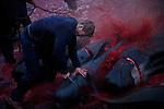 The Faroese Whale Kill