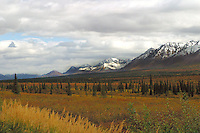 Alaska - Broad Pass