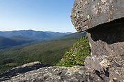 Pemigewasset Wilderness from the summit of Zeacliff Mountain along the Appalachian Trail in the White Mountains, New Hampshire USA. Much of this forest was logged during the East Branch & Lincoln Railroad era, which was a logging railroad in operation from 1893-1948.