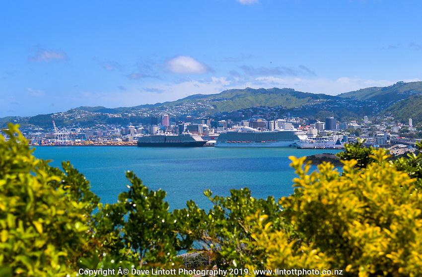 CentrePort in Wellington, New Zealand on Wednesday, 20 November 2019. Photo: Dave Lintott / lintottphoto.co.nz