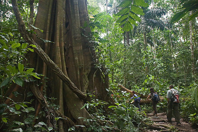 HIKING THROUGH THE AMAZON JUNGLES OF PERU
