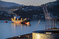 Container ship Lori at CentrePort in Wellington, New Zealand on Saturday, 14 March 2020. Photo: Dave Lintott / lintottphoto.co.nz