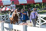 July 25, 2020: Firenze Fire ridden by Irad Ortiz, Jr. enters the track before the start of the Alfred G Vanderbilt grade 1  on Alfred G Vanderbilt  Day at Saratoga Race Course in Saratoga Springs, New York. Rob Simmons/Eclipse Sportswire/CSM