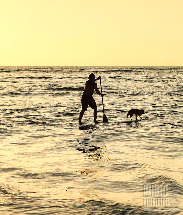 Keoni Durant, a Hawaiian carver, paddles with his dog Milo in Hanalei Bay, Kaua'i.