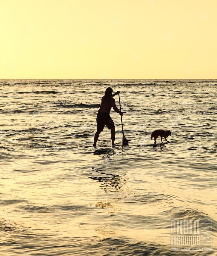 Keoni Durant, a Hawaiian carver, paddles with his dog Milo in Hanalei Bay, Kaua'i.