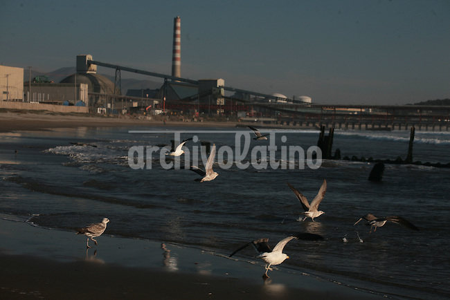 Seagulls fly near the  Concon refinery, in   Quintero, in the V Region.In the spot , known as the energy pole of Chile, is under construction a plant to process liquified gas , GNL, to work out the country's energy crisis.