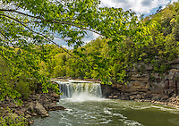Cumberland Falls State Park, Kentucky: Tree branches frame the view of Cumberland Falls with the Cumberland River in spring