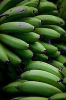Conceicao do Castelo_ES, Brasil...Cachos de banana em Conceicao do Castelo...Banana bunches in Conceicao do Castelo...Foto: LEO DRUMOND / NITRO