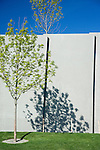 Strong afternoon sunlight through the trees casts vivid shadows on the retaining wall, creating an ever-changing graphic display of light and shadow in two dimensions, and three.  SAM's Olympic Sculpture Park, Seattle, WA.