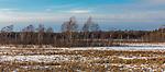 Crex Meadows wildlife area in February.