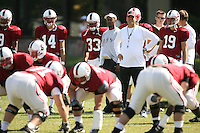26 April 2007: Head coach Jim Harbaugh watches during a spring practice at the practice field in Stanford, CA. Tavita Pritchard (14), Jason Evans (33), Willie Taggart, and Nicholas Ruhl (19) are in the background.