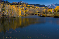 Aspen trees reflecting on a small lake in the San Jaun Mountains near Telluride Colorado.