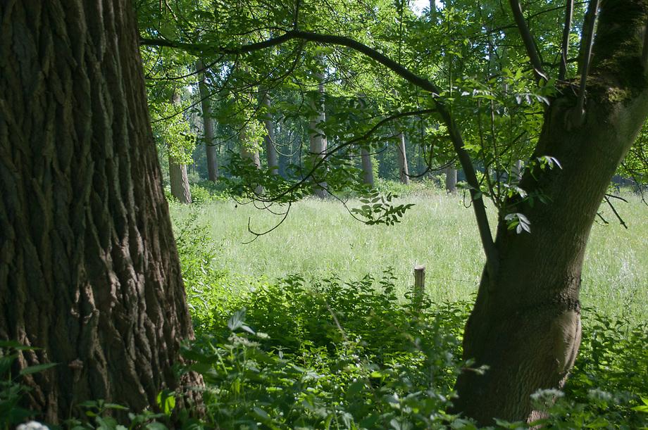 Oudland, Brabans Landschap