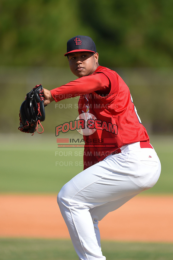 St. Louis Cardinals pitcher Jery Then (23) during practice before a minor league spring training game against the New York Mets on April 1, 2015 at the Roger Dean Complex in Jupiter, Florida.  (Mike Janes/Four Seam Images)