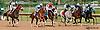 No Shenanigans winning at Delaware Park on 8/17/13