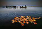 Diyas on the Ganges, Evening Offerings<br /> The Hindu faith has many colorful, often flamboyant traditions, rituals, and ceremonies.  Perhaps one of the more subdued traditions is that of setting offerings adrift on the sacred waters of the Ganges.  These small votives comprised of cups made of dried leaves, marigold flower petals and a lit candle, are gently placed upon the river's surface at sundown.