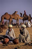 India, Rajasthan, Pushkar: Camels and traders at camel festival | Indien, Rajasthan, Pushkar: Dromedare und Haendler auf dem Camel Festival