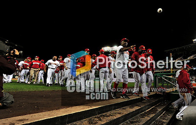 30 September 2009: Members of the Washington Nationals return to the dugout after congratulating Justin Maxwell at home plate after a game against the New York Mets at Nationals Park in Washington, DC. The Nationals rallied in the bottom of the 9th inning on Justin Maxwell's walk-off Grand Slam to win 7-4 and sweep the Mets 3-game series capping the Nationals' 2009 home season. Mandatory Credit: Ed Wolfstein Photo