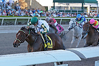 HALLANDALE BEACH, FL - MAR 3:  Classic Rock #4 with jockey Luis Saez on board wins the Gulfstream Park Sprint GIII Stakes at Gulfstream Park on March 3, 2018 in Hallandale Beach, Florida. (Photo by Liz Lamont/Eclipse Sportswire/Getty Images)