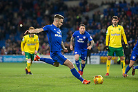 Joe Ralls of Cardiff City scores his side's first goal from the penalty spot during the Sky Bet Championship match between Cardiff City and Norwich City at the Cardiff City Stadium, Cardiff, Wales on 1 December 2017. Photo by Mark  Hawkins / PRiME Media Images.