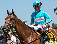 ARCADIA, CA. MAY 27: #6 Lady Eli ridden by Irad Ortiz, Jr, after winning The Gold Cup at Santa Anita Stakes (Grade 1) on May 27, 2017 at Santa Anita Park in Arcadia, CA. (Photo by Casey Phillips/Eclipse Sportswire/Getty Images)