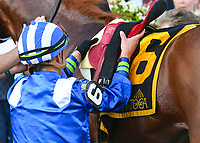 Qurbaan (no. 6), ridden by Irad Ortiz Jr. and trained by Kiaran McLaughlin, wins the 59th running of the grade 2 Bernard Baruch Handicap for three year olds and upward on September 03, 2018 at Saratoga Race Course in Saratoga Springs, New York. (Bob Mayberger/Eclipse Sportswire)
